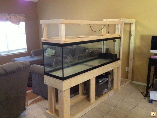 Minimalis Partisi aquarium