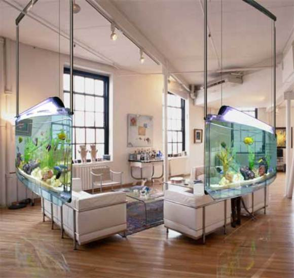 Partisi Ruangan dari aquarium